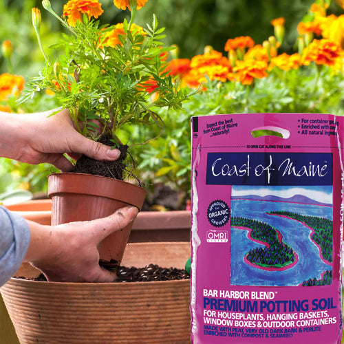Coast of Maine Bar Harbor Blend Organic Potting Soil