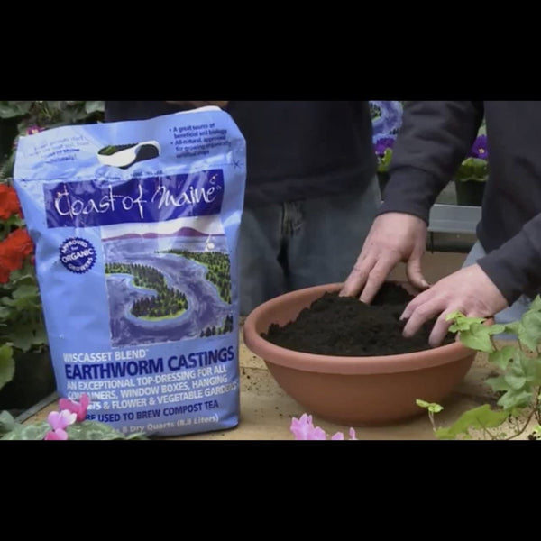 Coast of Maine Wiscasset Blend Organic Earthworm Castings