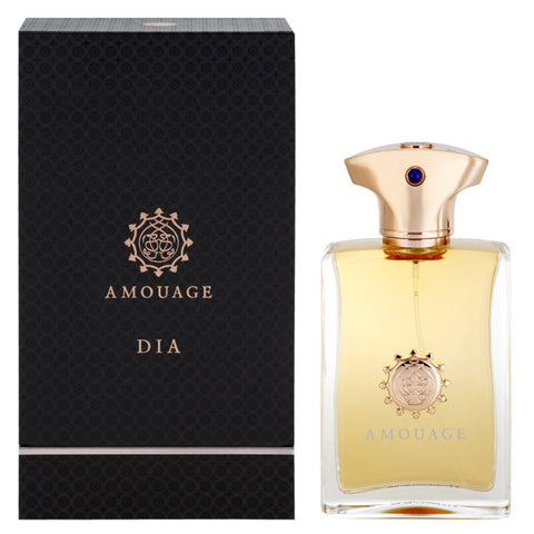 Dia by Amouage 100ml EDP for Men