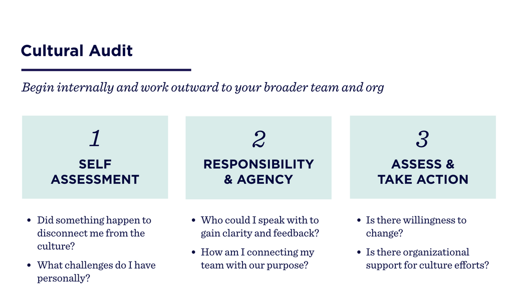 Cultural Audit: Begin internally and work outward to your broader team and org