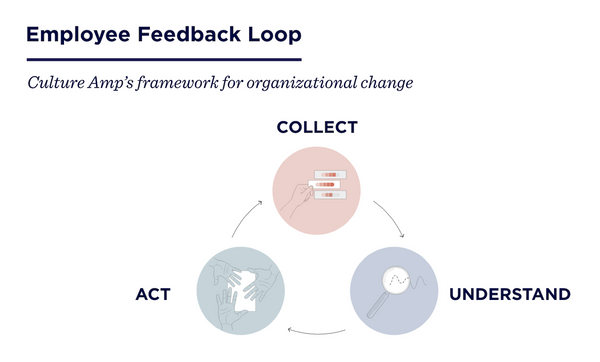 Culture Amp's Employee Feedback Loop