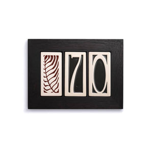 3 Part House Number Frame