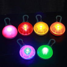 Load image into Gallery viewer, Pet Night Safety LED Flashlight Pendant