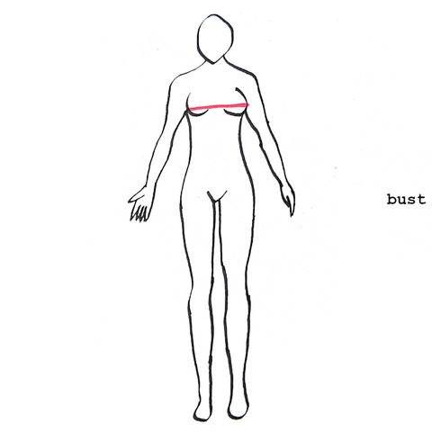 diagram depicting where to measure your bust