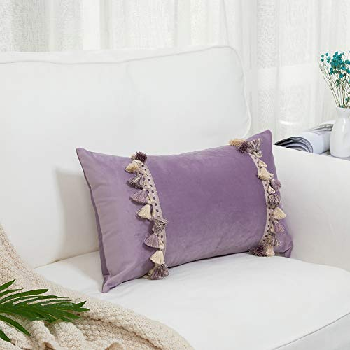 blue page Velvet Decorative Lumbar Throw Pillow Covers for Couch Sofa Bed, Solid Color Soft Pillowcase with Tassels Fringe, Home Decor Rectangle Pillow Case, 12 x 20 Inches, Purple