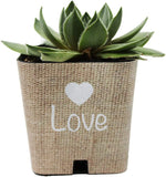"PRODUCT80 Baby Shower Favors, Wedding Shower Favors | Succulent Favor Wraps for 2"" Pots, Does NOT Include Succulents, Unique Souvenirs for Guests as Thank You Gifts (25, Burlap Watch ME Grow)"