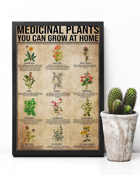 Personalized Pharmacist Medicinal Plants You Can Grow at Home Jobs Posters Birthday Gifts, Ideas On Xmas, Birthday, Home Decor,
