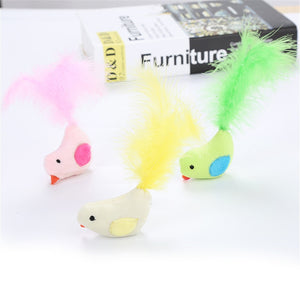 PetCat Toy Plush Colorful Bird With Feather Pet Supplies Interactive Teaser Toy Brinquedos Para Gato hot sale