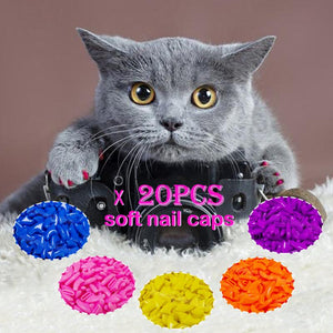 20Pcs Silicone Soft Cat Nail Caps Cat Paw Claw Pet Nail Protector Cat Nail Cover Cat Products For Pets Supplies Accessories