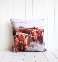Load image into Gallery viewer, Indoor Cushion - Bovine Heard