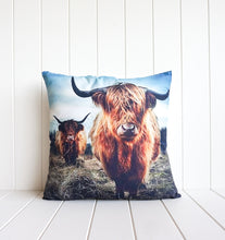 Load image into Gallery viewer, Indoor Cushion - Bovine Pair Hills