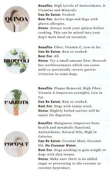 Treat your dog to these yummy snacks
