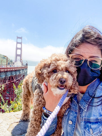 Spending time with your pet and having new adventures and road trips is a great way for dog moms to socialize their pets.