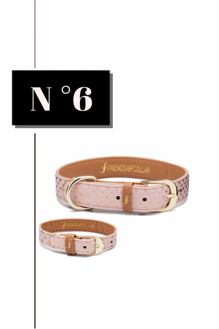 Puppy Love Dog Collar and Bracelet Set from FriendshipCollar