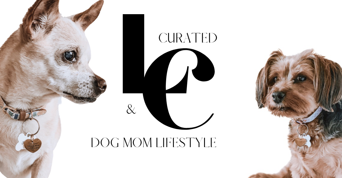Lindsey & Coco Curated Lifestyle Blog - About Us