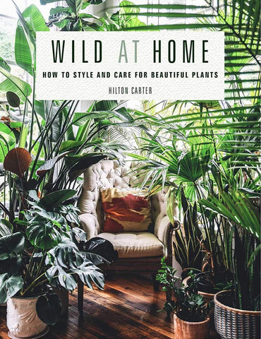 Wild At Home How To Style By Hilton Carter Amazon Finds Best Seller