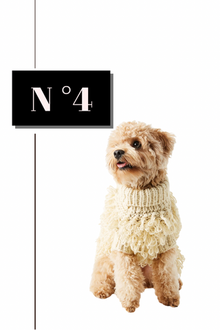 Max Bone Curly Sweater Dog Gift Guide