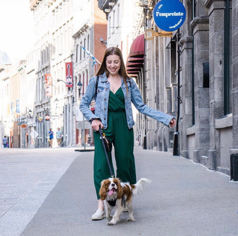 Dog-momager and social media manager Cara strolling the streets of Montreal with Henry The Smol.