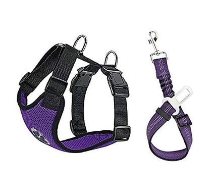 Dog harnesses and seatbelts are essential safety equipment for traveling by car.