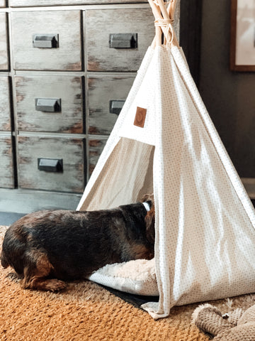 The Pickle & Polly Dog Tent Bed