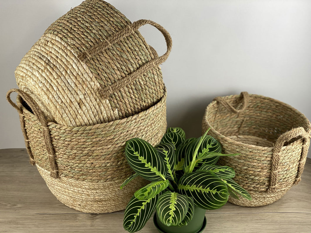 Natural Green Basket