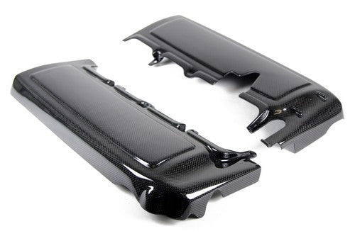 Carbon Fiber Fuel Rail Cover/Pair, 2005-2010 Ford Mustang