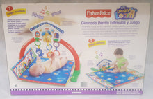 Load image into Gallery viewer, FISHER PRICE BABY GYM MAT