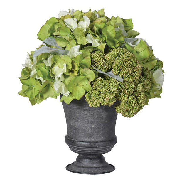 Lime Hydrangea & Sedum Arrangement in Metal Urn