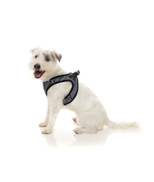 Fuzzyard Northcote Step-in Dog Harness
