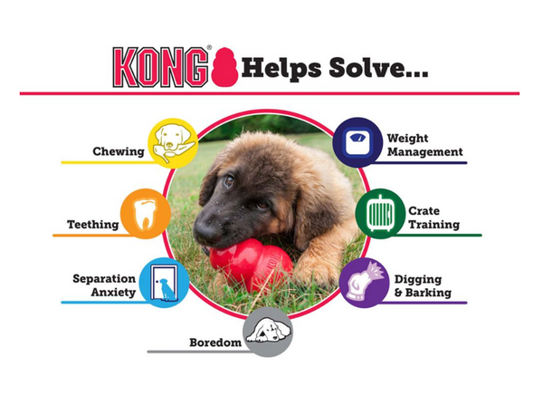 KONG® Puppy Small Dog Toy