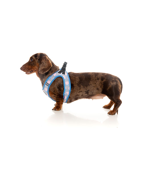 Fuzzyard Dippin Step-in Dog Harness