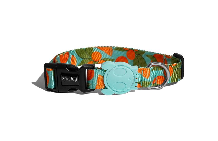 [10% OFF] Zee.dog Florida Dog Collar