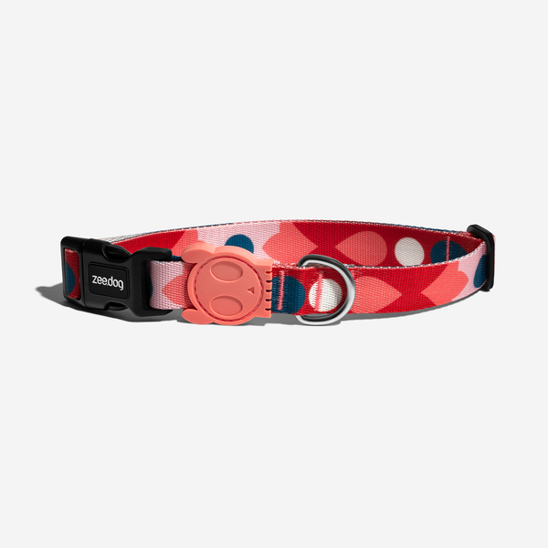 [10% OFF] Zee.dog Samé Dog Collar