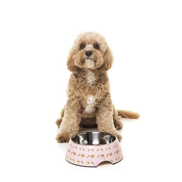 FuzzYard Easy Feeder Dog Bowl (Sushiba)