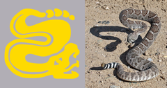 Silver Snakes Legends of the Hidden Temple shirts