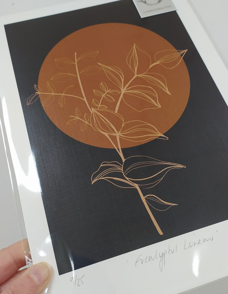 Limited edition 'Eucalyptus Linear' A4 print