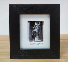 Mini framed print - Duke of Wellington with cone