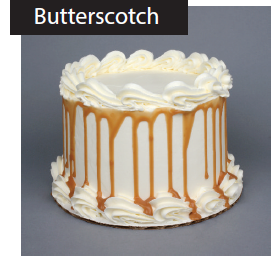 Salted Caramel Butterscotch Cake