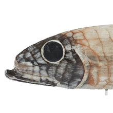 Load image into Gallery viewer, Large Wooden Fish on Stand