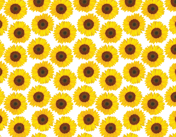 Pleated Sunflowers Pattern - Maskcott