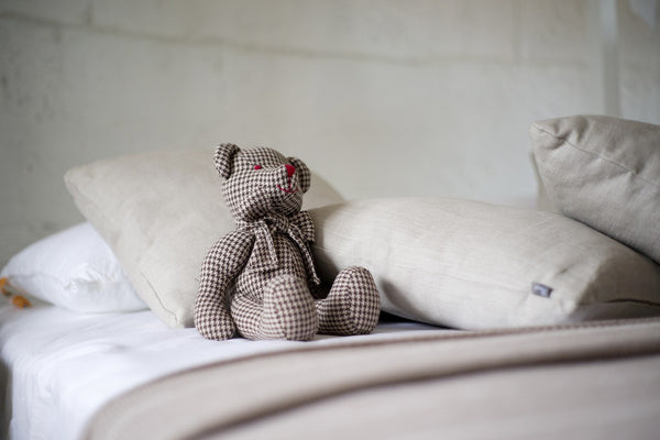 teddy bear makes dorm room feel like home