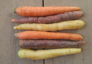 Organic Mixed Carrots 1lb