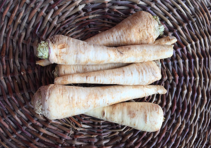 Organic Parsley Root  1.5 lb
