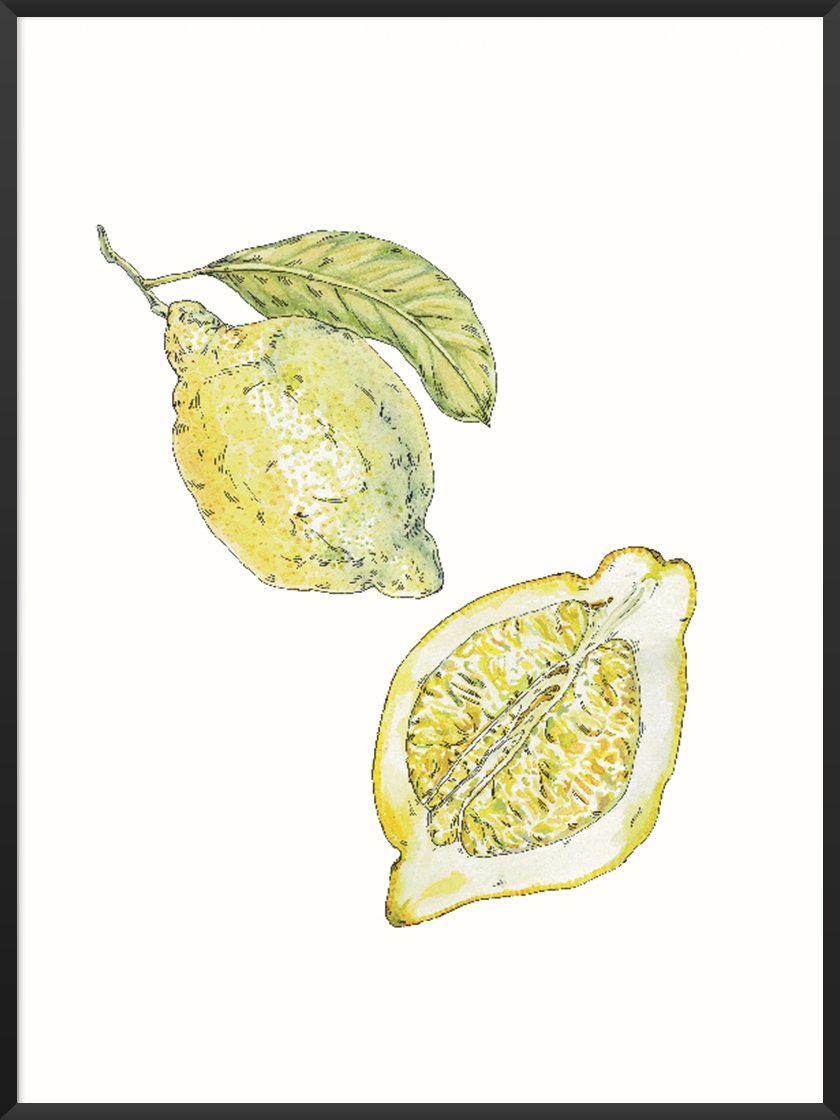 project-nord-hand-painted-vintage-lemon-poster-product-picture