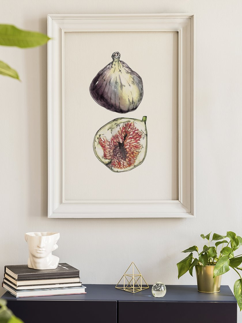 figs-hand-painted-vintage-botanical-poster-in-interior