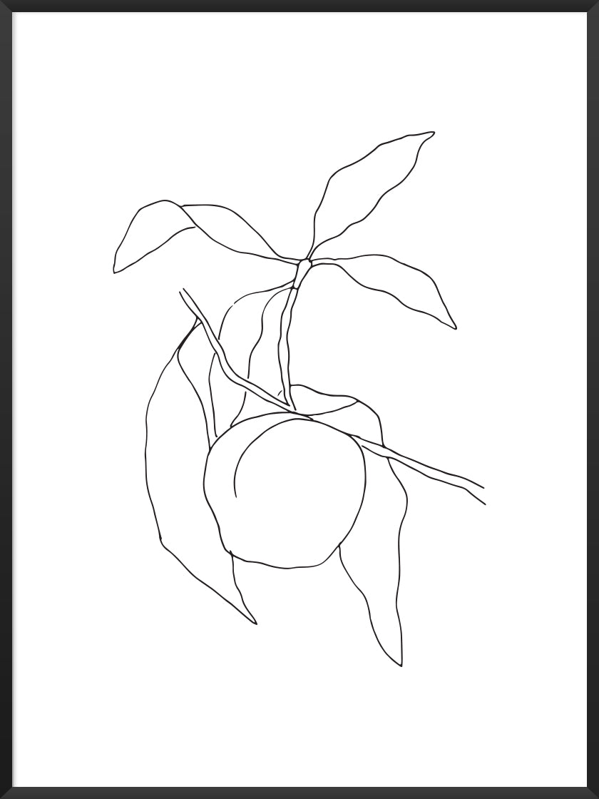 Peach - Line Art Fruit Poster