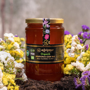 Organic Polyfloral (Wild Flowers) Honey - TurkishTaste.com