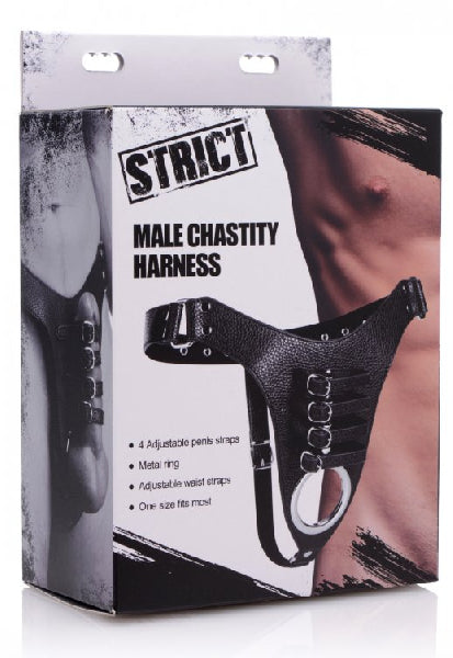 Male Chastity Harness - The Purple Drawer