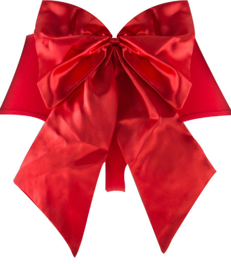 Sexy Bow Vibrating Panty (Red) - The Purple Drawer
