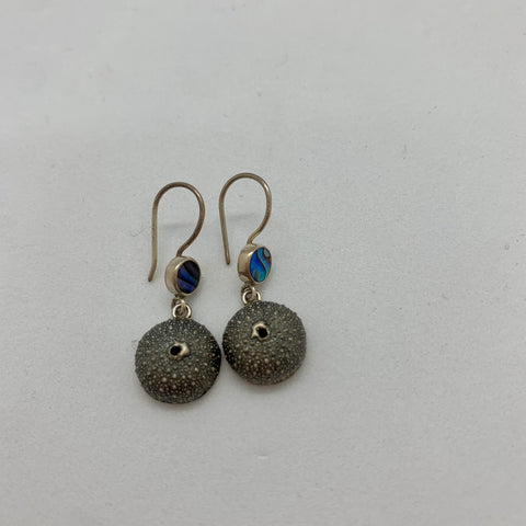 Kina Paua Earrings